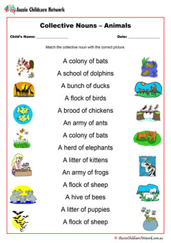 Collective Nouns Animals Worksheet