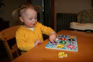 Cognitive Development for Toddlers 2-3 Year Olds
