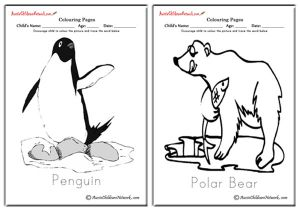 Polar Animals Colouring Pages