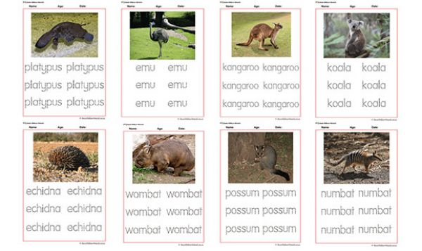 tracing names of australian animals