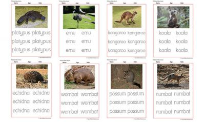 Tracing Names Of Australian Animals