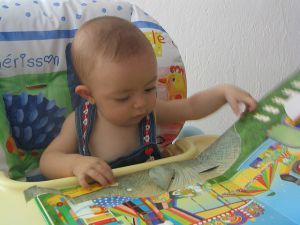 Language Development for Babies 12-24 months