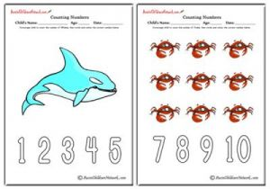 Counting Numbers - Sea World Theme